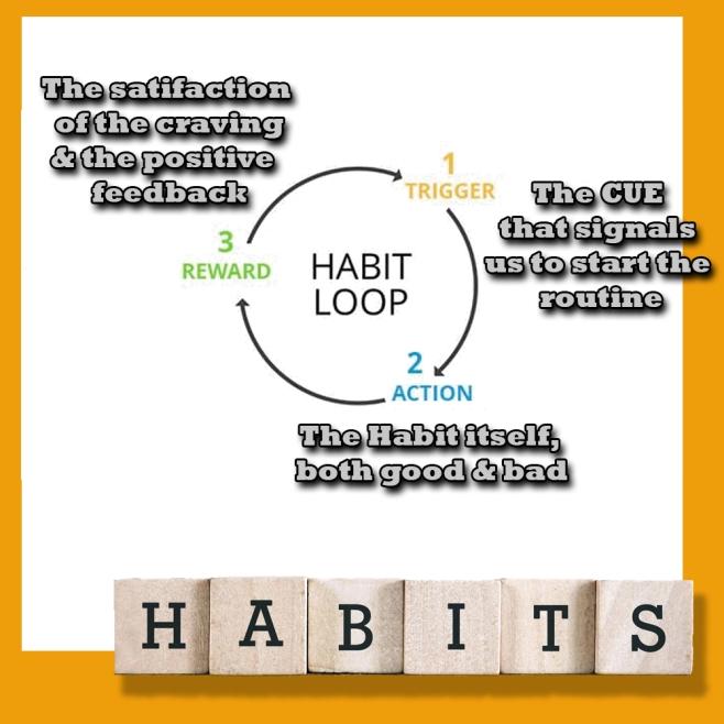The Habit Loop.jpg